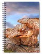 Funky Fungi Spiral Notebook