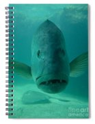 Funny Fish Face Spiral Notebook