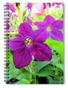 Funny Flower Faces Spiral Notebook