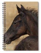 Fuzzy Colt Spiral Notebook