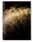 Fuzzy Feather Spiral Notebook