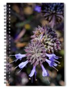 Fuzzy Purple 1 Spiral Notebook