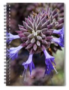 Fuzzy Purple 2 Spiral Notebook