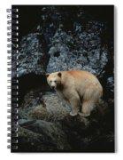 Fv3608, Jason Puddifoot White Spirit Spiral Notebook