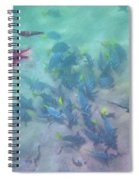 Galapagos Islands From Under Water Spiral Notebook