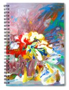 Galaxy Formation Spiral Notebook