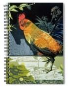 Gamecock And Hen Spiral Notebook