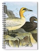 Gannet Spiral Notebook