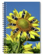Garciacat Sunflower Spiral Notebook