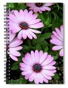 Garden Beauty Spiral Notebook