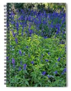 Garden Bench And Sage Spiral Notebook