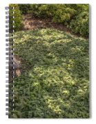 Garden Color At Woodward Park 21f Spiral Notebook