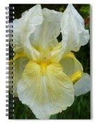 Garden Fairy Of Sunset Spiral Notebook