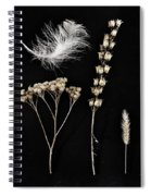 Garden Finds Spiral Notebook