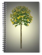 Garden Flowers 2 Spiral Notebook