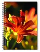 Garden Glow Spiral Notebook
