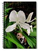 Garden Hound Spiral Notebook