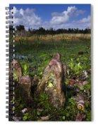 Garden In The Glades Spiral Notebook