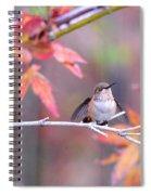 Garden Joy Spiral Notebook