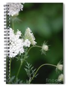 Garden Lace Group By Jammer Spiral Notebook
