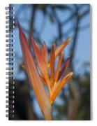 Garden Paradise Spiral Notebook