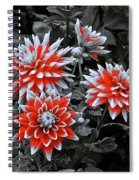 Garden Pom Poms Spiral Notebook