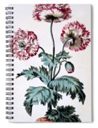 Garden Poppy With Black Seeds Spiral Notebook