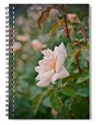 Garden Pride Spiral Notebook