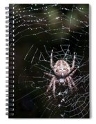 Garden Spider Spiral Notebook