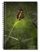 Garden Stories I Spiral Notebook