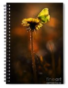 Garden Stories II Spiral Notebook