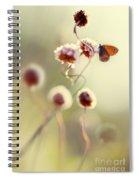 Garden Stories V Spiral Notebook