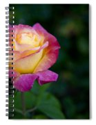 Garden Tea Rose Spiral Notebook