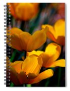 Garden Tulips Spiral Notebook