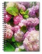 Gardens - Pink And Lavender Hydrangea Spiral Notebook