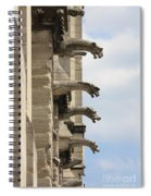 Gargoyles Of Notre Dame Spiral Notebook