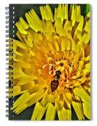 Gathering Nectar Spiral Notebook