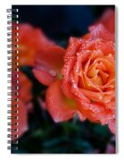 Gathering Of Roses Spiral Notebook
