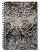 Gator Eyes Spiral Notebook