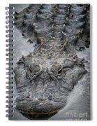 Gator Hunting Spiral Notebook