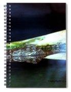 Gator Spiral Notebook