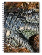 Gator Manicure Spiral Notebook