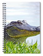 Gator Smile Spiral Notebook