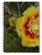 Gattinger's Prairie Clover And Prickly Pear Flower Spiral Notebook