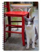 Gatto Italiano Spiral Notebook