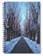 Gauntlet Of Trees To Hohenheim Castle Spiral Notebook