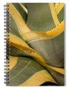 Gave Cactus Spiral Notebook