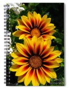 Gazania Named Kiss Yellow Flame Spiral Notebook