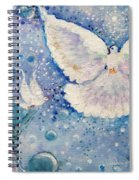 Gaze Is Clear Spiral Notebook