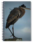 Gbh Pose II Spiral Notebook